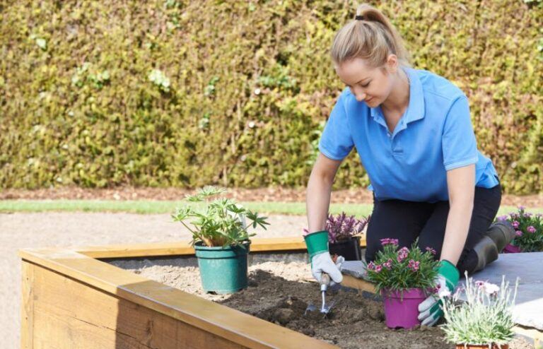 Landscaping-your-Garden